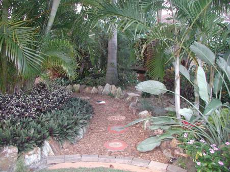 tropical style front garden.