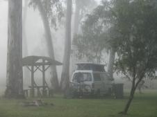 Matilda in the mist