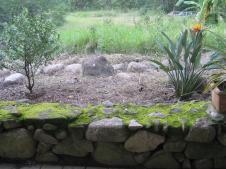 Cottage garden weeded