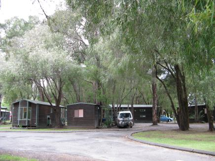 Nestled in our cabin surrounded by the mighty Karri trees