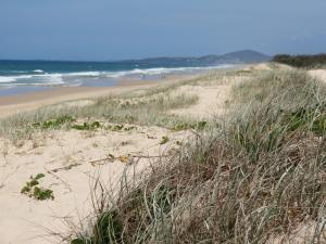 White sand, blue sky and bluer ocean