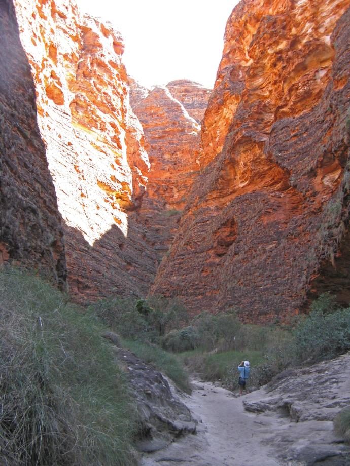Gazing in awe at the glowing colours of Cathedral Gorge bungle bungle