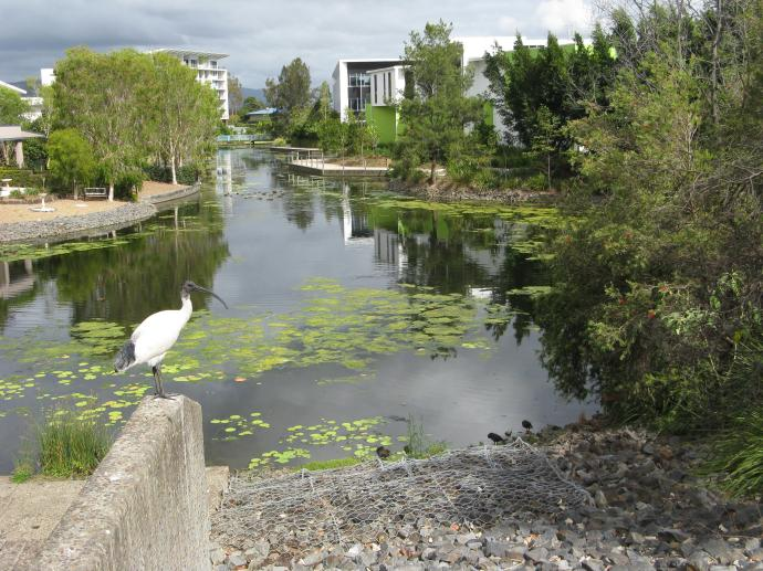 Landscaped lake and walkways