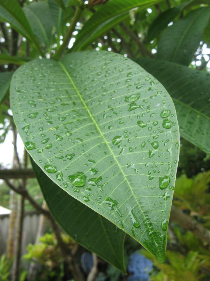 today raining