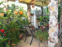 Bali corner, a lovely place to sit with a cup of tea.