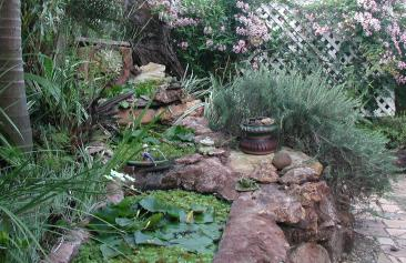 Lily ponds made from recycled baths