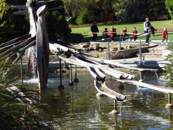Unusual fountain