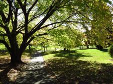botanic gardens Tasmania 128_4000x3000