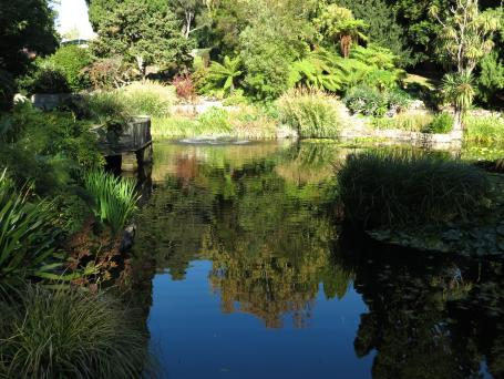 botanic gardens Tasmania 162_4000x3000