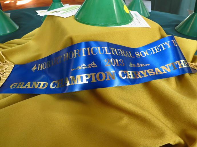 Blue ribbon champion
