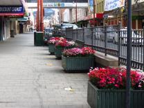 Elizabeth Street Mall
