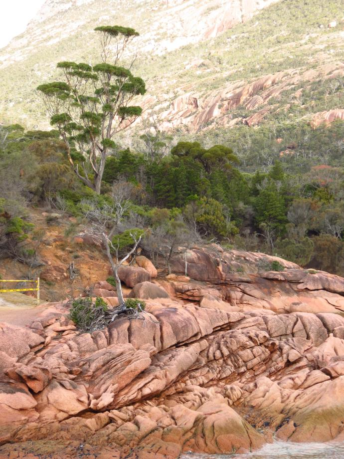 The pink granite is stunning , all the folds and formations are a delight to photograph