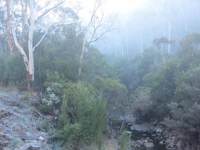 The mist hung around the valleys