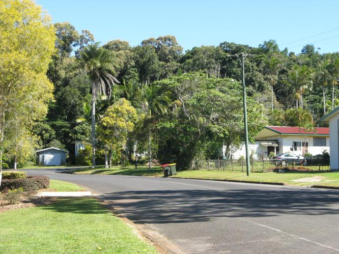 Streets and houses nestle into a rainforest back drop