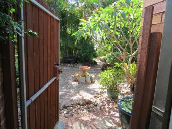 garden nov 2013 003_4000x3000