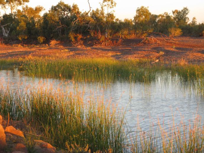 Robe River
