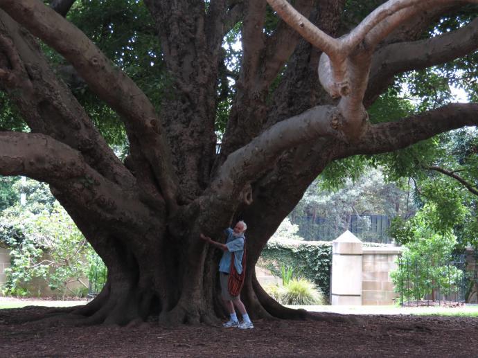 Jack hugging a tree