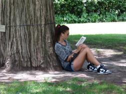 Reading under a shady tree