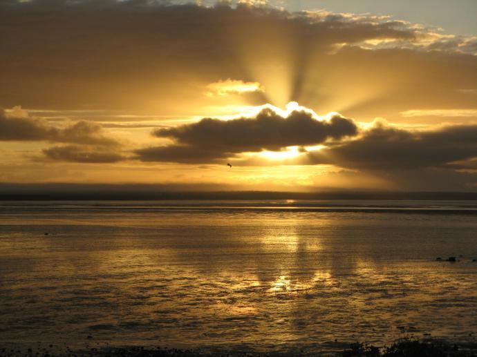 sunrise Roebuck Bay