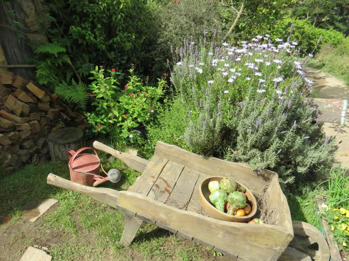 Another hand made wheel barrow