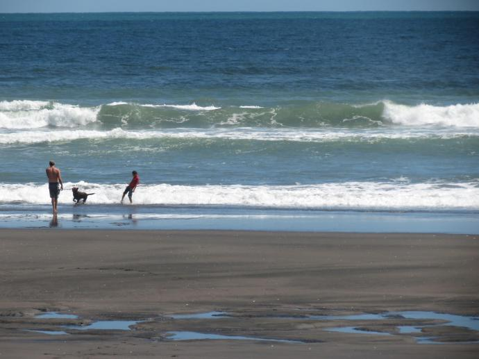 The energetic younger ones take the dog for a game in the ocean.