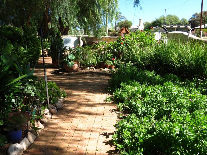 Along the side path towards the veg garden