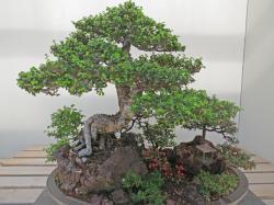 Arboretum PCsx40 044_4000x3000