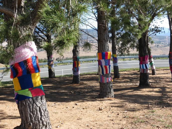 Arboretum PCsx40 132_4000x3000