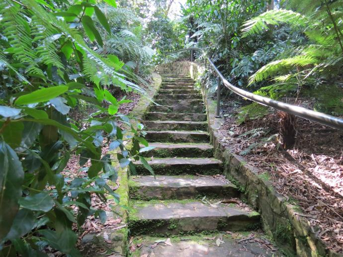 Botanic gardens 2 PC sx40 034_4000x3000