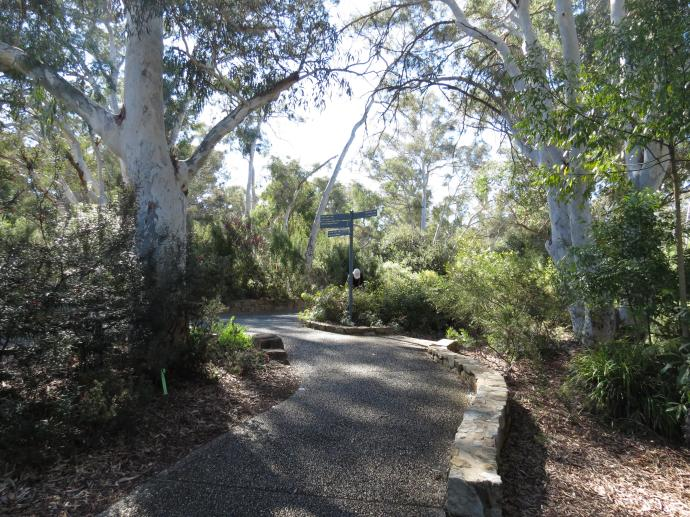 Canberra botanic gardens pc 053_4000x3000