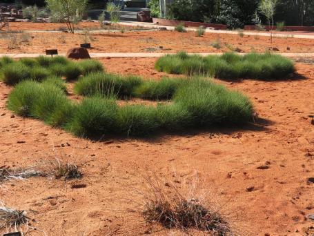 Canberra botanic gardens pc 096_4000x3000