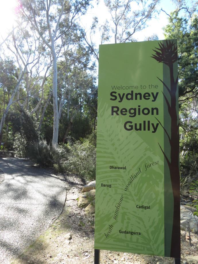 Canberra botanic gardens pc 099_3000x4000