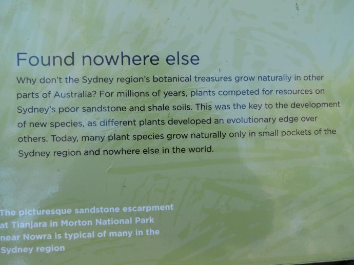 Canberra botanic gardens pc 100_4000x3000