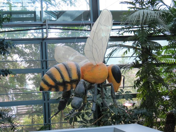 That is a BIG bee
