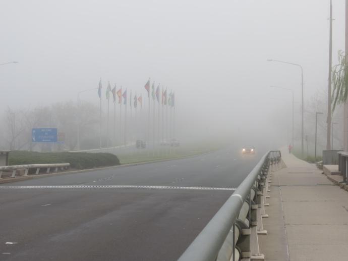 Misty lake pc 014_4000x3000