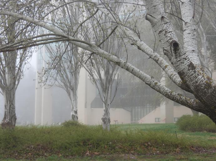 Misty lake pc 049_4000x3000