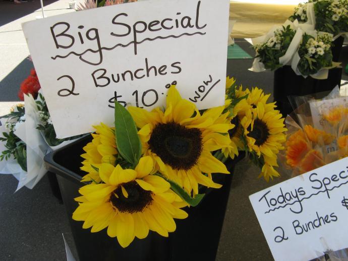 Burleigh farmers markets pc 002_3264x2448