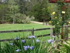 Part of the 20 acre farm