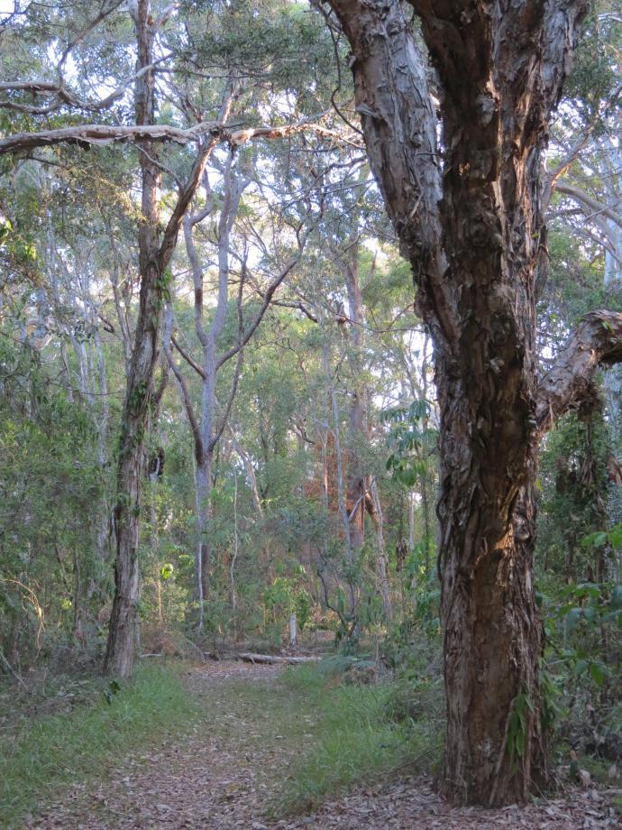 nature park walk pc 015_3000x4000