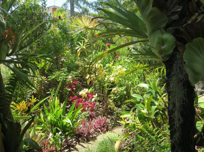 Oct 2014 garden pc 051_4000x3000