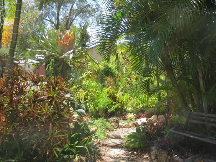Oct 2014 garden pc 071_4000x3000