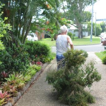 Big Jim tree cutting 042_4000x3000