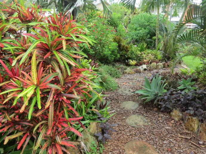 garden Dec 2014 pc 021_4000x3000