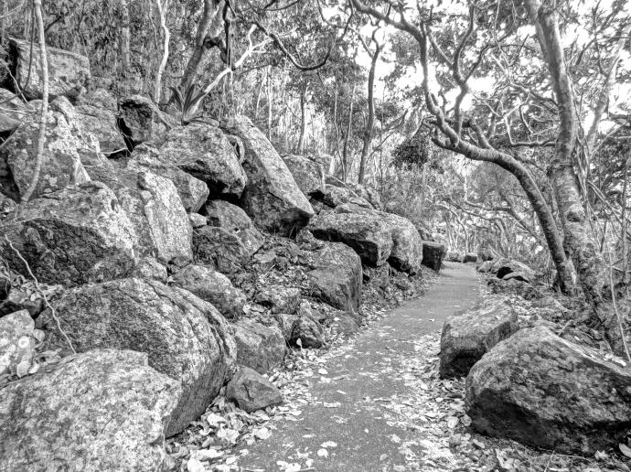 Rocks Burleigh Heads HDR black and white_3988x2983_3988x2983