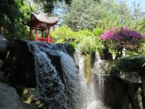 Chinese Gaedens Sydney 094_4000x3000