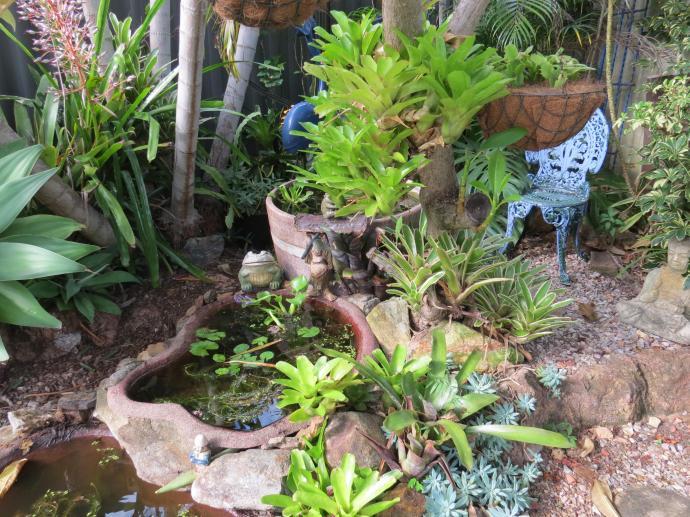 Garden March 2015 072_4000x3000