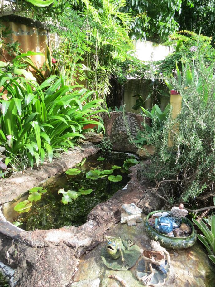 Garden March 2015 088_3000x4000