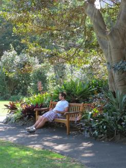 Sydney art gallery botanic gardens 123_3000x4000