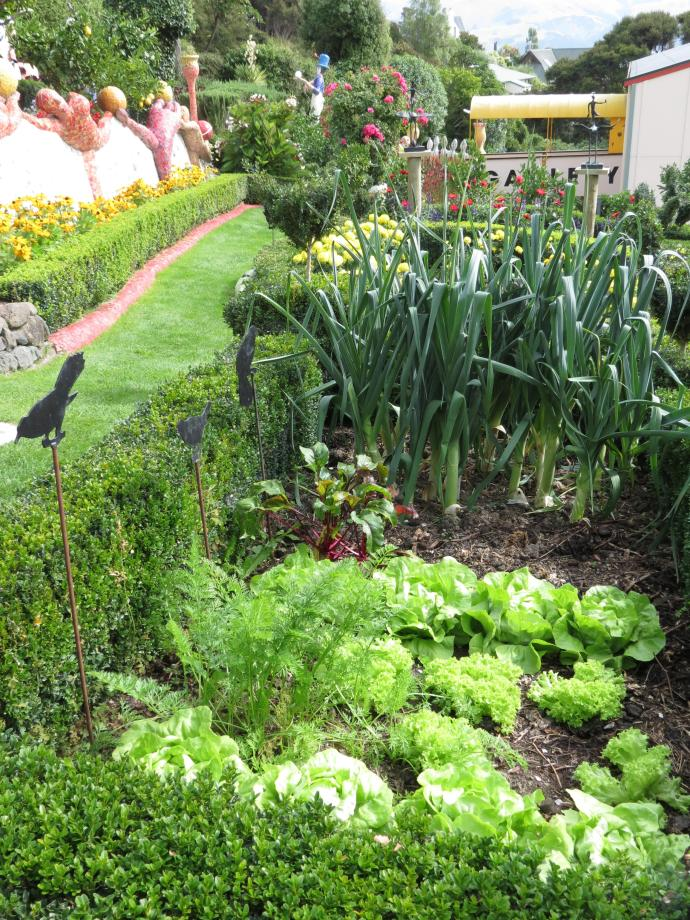 There's even a very healthy and flourishing veggie garden