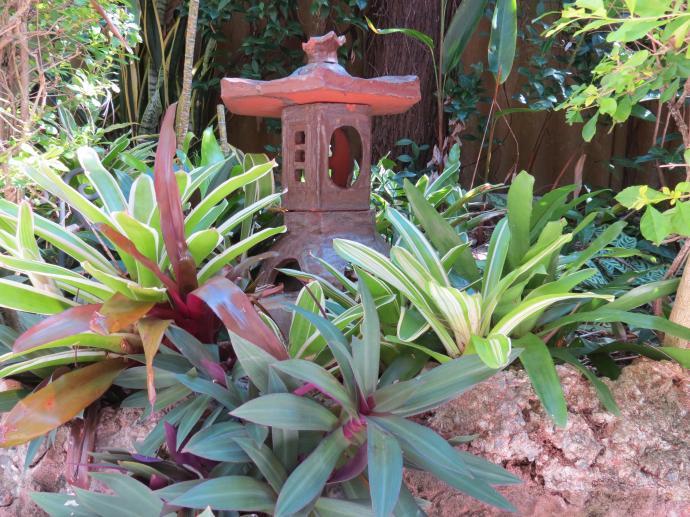 May 2015 garden 011_4000x3000